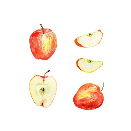 Red apple set isolated on white background. Watercolor illustration of half and slice cut and whole red apples. Harvest collection. Fruit set. Banco de Imagens