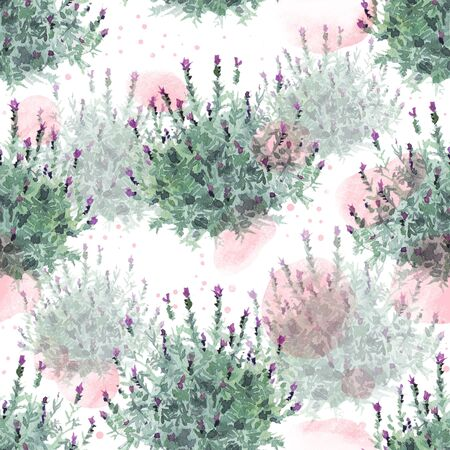 watecolor French lavender bushes delicate seamless pattern on white background with pastel rose pink stains 스톡 콘텐츠