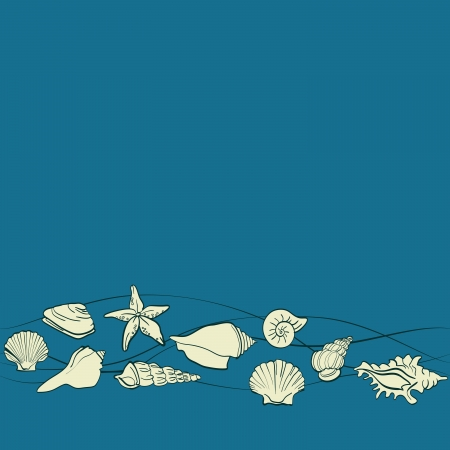 cockle: seashells sea vector seamless pattern Illustration
