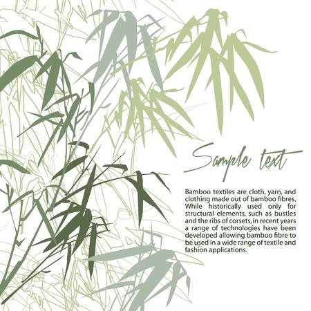 japones bambu: Bambú. Floral de fondo con copia espacio, ilustración vectorial Vectores