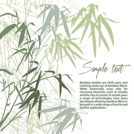 korean traditional: Bamboo. Floral background with copy space, vector illustration