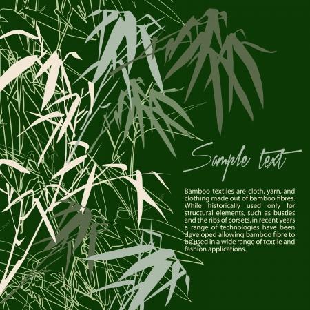 japones bambu: Bamboo. Floral de fondo con copia espacio, ilustración