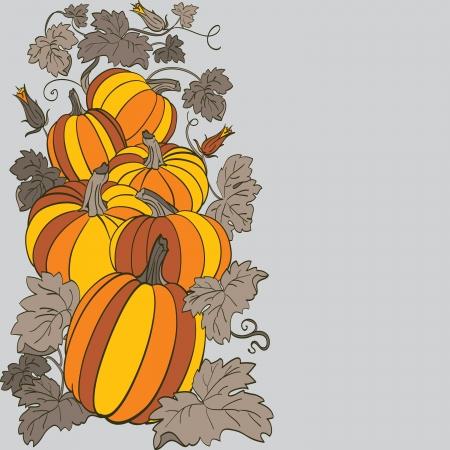 Pumpkin Background Stock Vector - 14675999