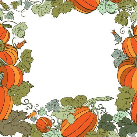 Pumpkin Background Stock Vector - 14676009