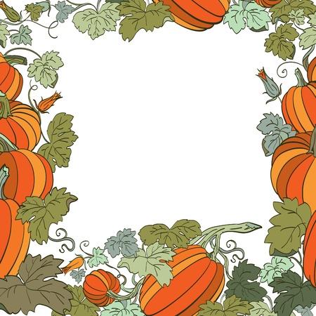 Pumpkin Background  Vector