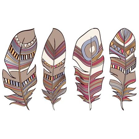 leaf curl: Ethnic Indian feathers plumage background Illustration