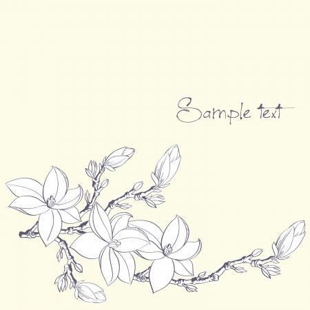 fondo con flores de magnolia para la tarjeta o invitación
