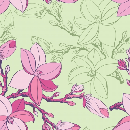 Floral seamless pattern with drawing magnolia flowers Stock Vector - 17058268