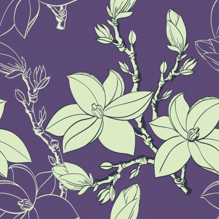 Floral seamless pattern with drawing magnolia flowers Stock Vector - 17058261