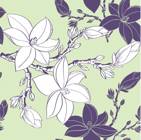Floral seamless pattern with drawing magnolia flowers Stock Vector - 17058263