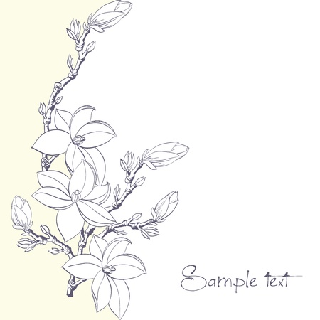 fondo con flores de magnolia de la tarjeta o invitación