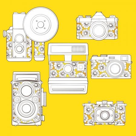 esporre: Macchine fotografiche d'epoca insieme con motivo floreale Vettoriali