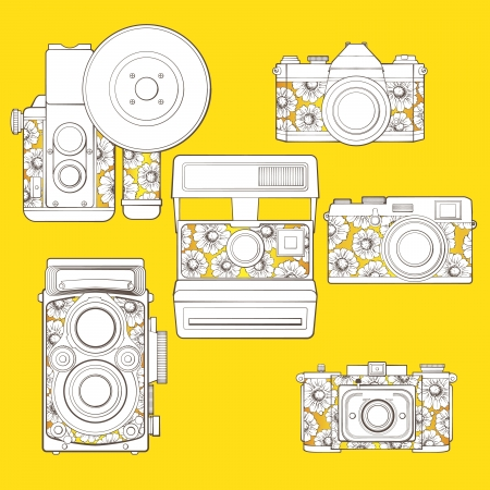 Vintage photo cameras set  with floral pattern  Illustration