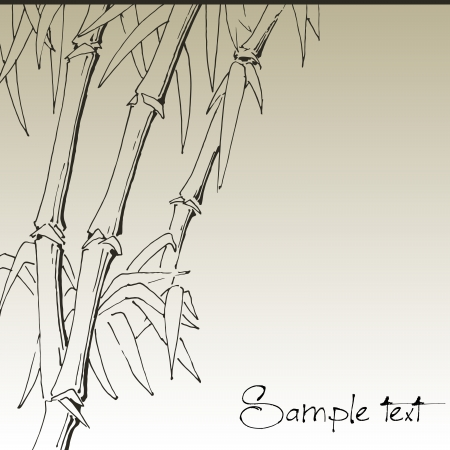 lucky bamboo: Branch of bamboo, background for design Illustration