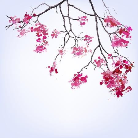 fleur de cerisier: Spring Blooming Sakura branche de taches de fond