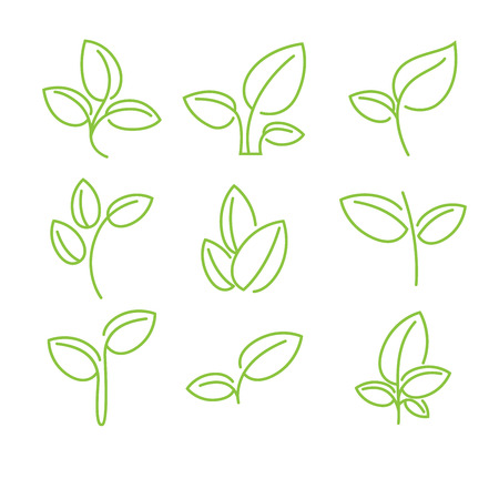 Set of green leaves design elements 向量圖像