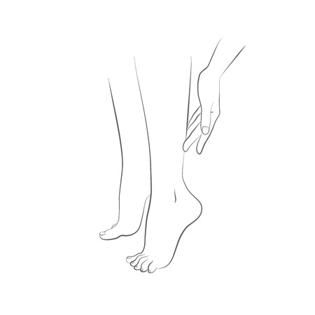 female legs: Beautiful womans female legs and hand vector