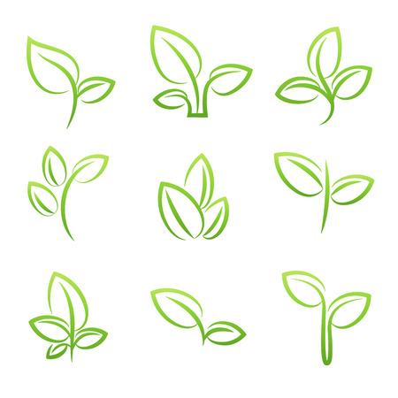 Leaf simbol, Set of green leaves design elements 일러스트