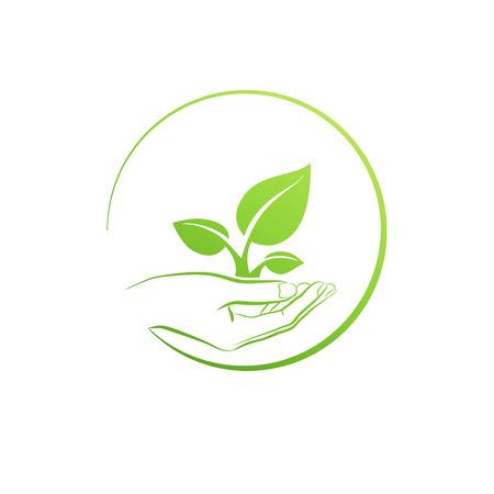 sementi: Impianto tenendo la mano, la crescita icona concetto illustrazione vettoriale Vettoriali