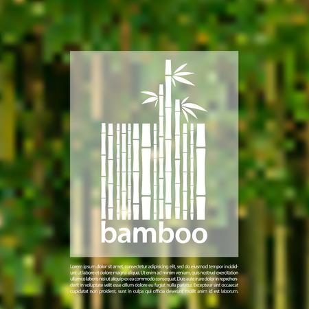 bambu: Bambú en un fondo de diseño vectorial de código de barras símbolo borrosa