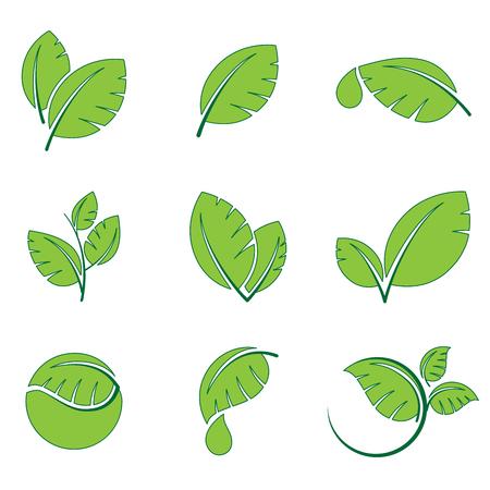 Green leaves leaf symbol vector icon set