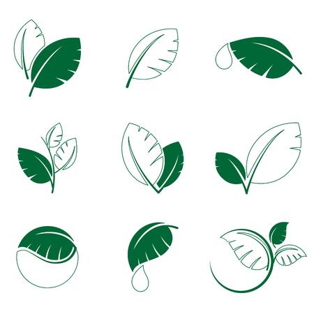 Green leaf leaves symbol vector icon set eps file