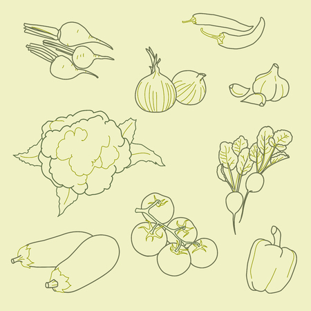 Set of hand-drawn vegetables, organic, healthy food, vector