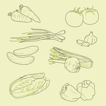 Set of hand-drawn vegetables, organic food, healthy food, vector