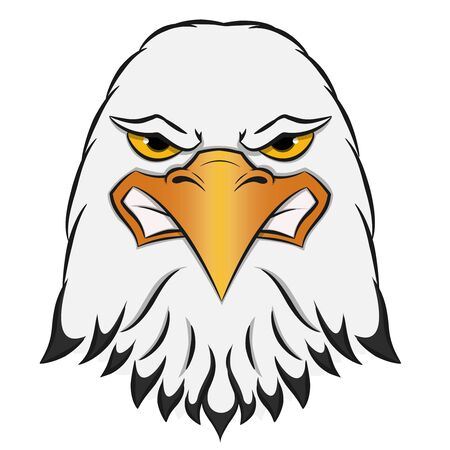 Angry eagle head mascot on white background