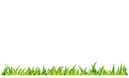 green grass isolated on white background vector Illustration