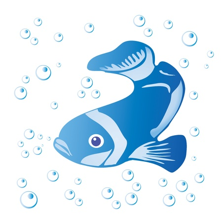 Fish and bubbles isolated on white -  illustration  Vector