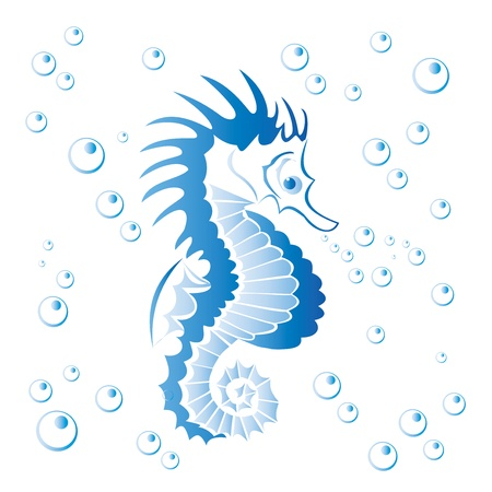 Seahorse with bubbles isolated on white -illustration  Vector