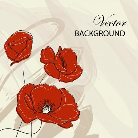 opium poppy: Three red poppies over vintage background  illustration