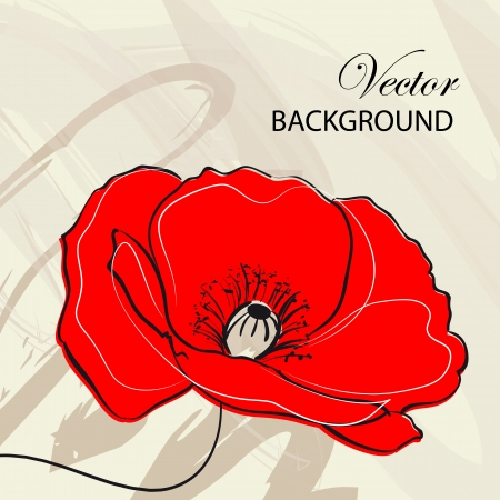 Red poppies over vintage background  illustration  Vector