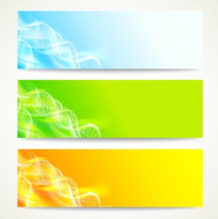 banner orizzontali: DNA set banner illustrazione, contenente i lucidi Vettoriali