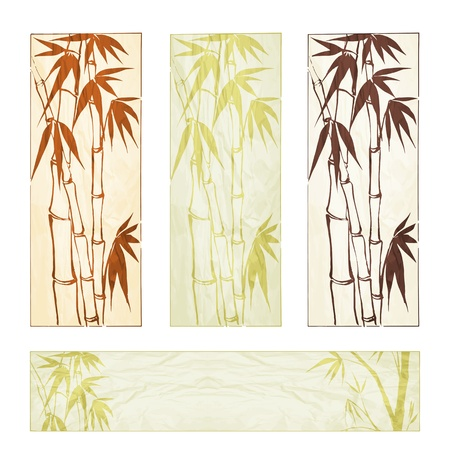 Bamboo banner set  illustration, contains transparencies, gradients and effects  Vector