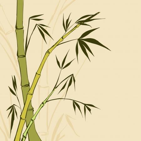 Bamboo ilustra