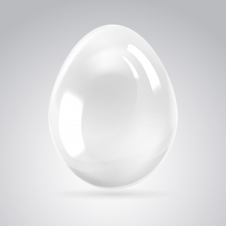 Silver egg on white background  Vector illustration, contains transparencies, gradients and effects
