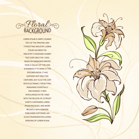 Blooming lilies over brown background  Vector illustration  Vector