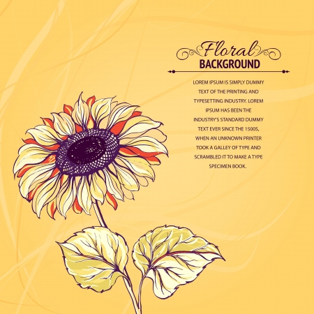 Illustration of sunflower  Vector illustration, contains transparencies, gradients and effects  Stock Vector - 18570245