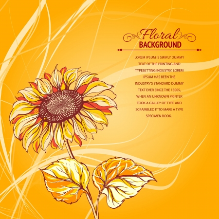 transparencies: Illustration of sunflower  Vector illustration, contains transparencies, gradients and effects