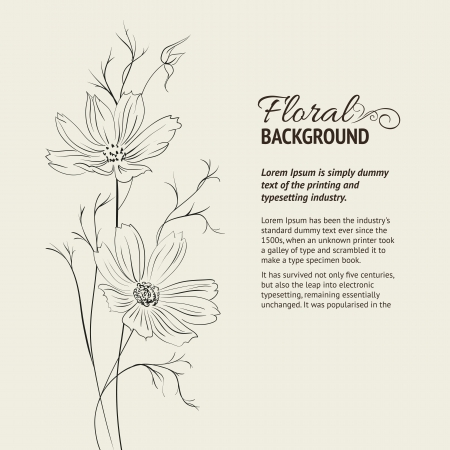 buttercup: Flower over sepia background  Vector illustration, contains transparencies, gradients and effects  Illustration