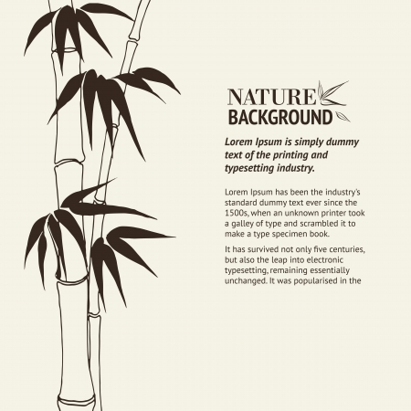 Bamboo banner set  Vector illustration, contains transparencies, gradients and effects  Vector