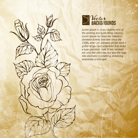floral letters: Silhouette of rose  Vector illustration