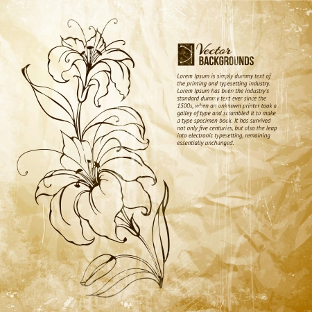 Blooming lilies over sepia background  Vector illustration  Vector