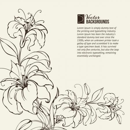giglio: Gigli in fiore su sfondo nero di seppia, vettore, illustrazione