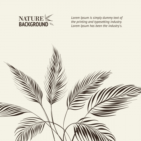 Palm tree over bamboo forest  Vector illustration  Vector