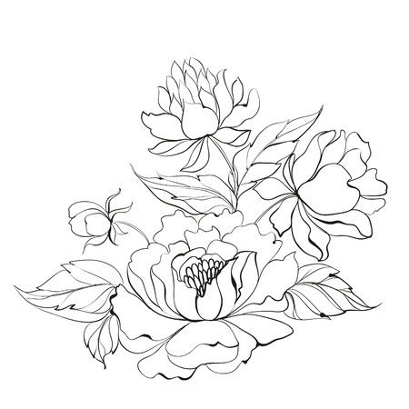 flower clip art: Ink Painting of Peony