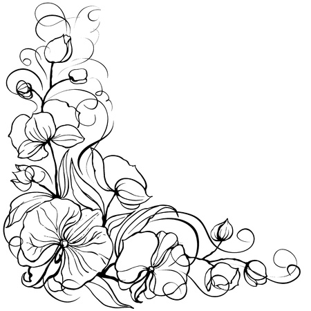 Orchid flower Vetores