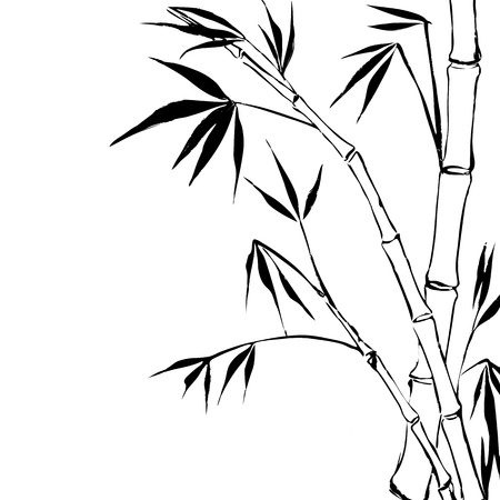 treelike: Bamboo  Illustration
